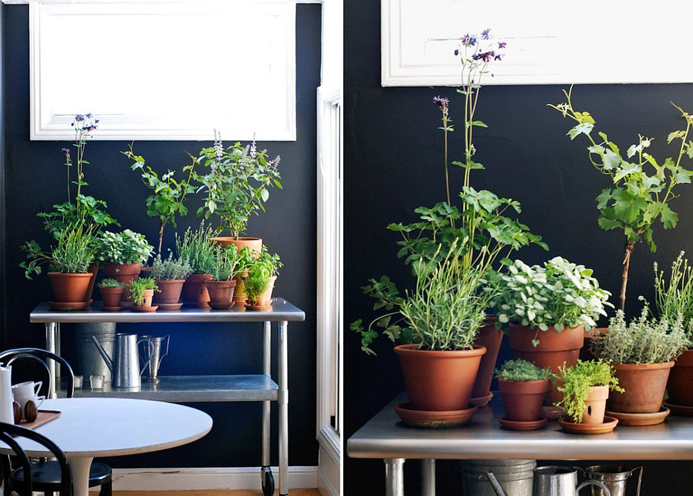 Turn the old bar cart into a perfect space for a herb garden along with a few terracotta pots this spring!