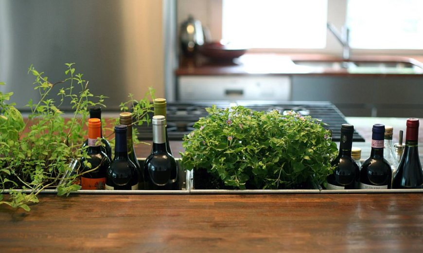 12 Kitchens with Small Herb Gardens: Green Freshness Indoors