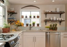 Use-the-space-next-to-the-window-to-create-a-beautiful-herb-garden-65730-217x155