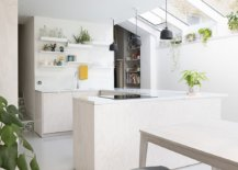 Greenery-and-accents-in-the-kitchen-bring-color-to-an-otherwise-neutral-interior-in-white-62625-217x155