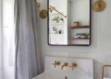 Midcentury-modern-cottage-bathroom-71359-217x155