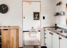 Modern-cottage-with-wooden-trim-59463-217x155