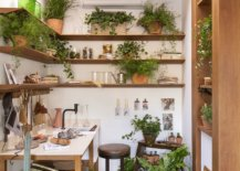 Skylight-brings-natural-light-into-this-small-crafting-room-full-of-greenery-22227-217x155