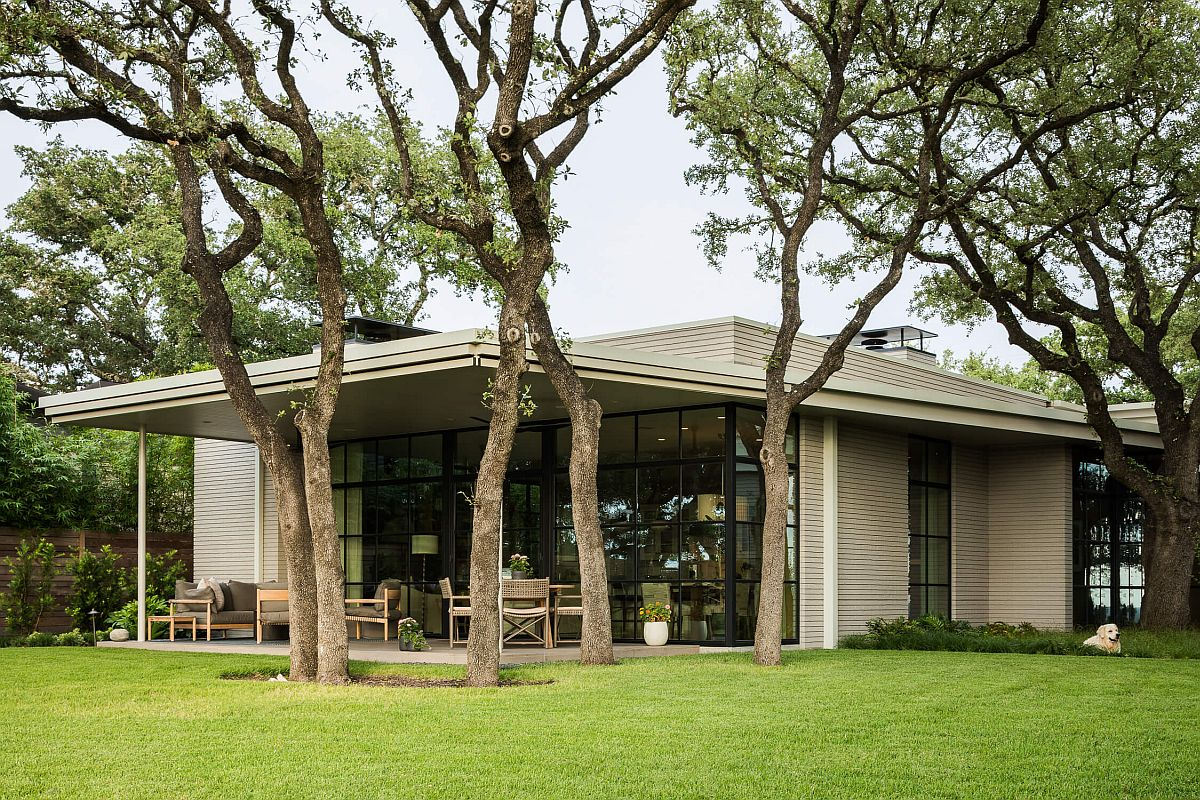 Floor-to-ceiling steel windows connect the new interior with the large rear garden and the oak tree outside