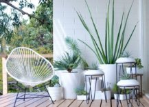 White-plant-stands-with-modern-style-22913-217x155