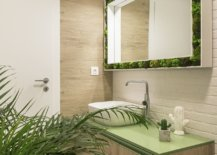Green-counterop-for-the-small-modern-bathroom-along-with-an-indoor-plant-86035-217x155