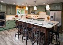 Just-a-dash-of-yellow-around-the-kitchen-window-enlivens-this-space-with-clasic-green-cabinets-53797-217x155