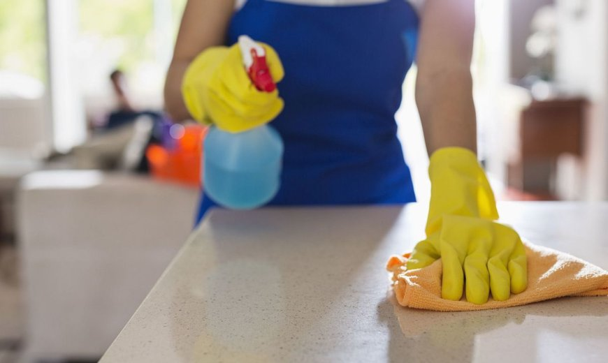 How to Keep Your Kitchen Pest-Free: Tips and Ideas