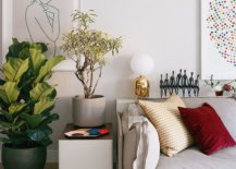 A-bit-of-greenery-enlivens-almost-any-interior-it-adorns-91684-217x155