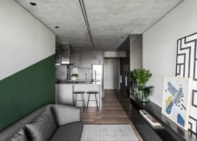Burnt-cement-surfces-in-the-apartment-give-it-a-unique-appeal-while-green-brings-color-to-the-neutral-space-69055-217x155