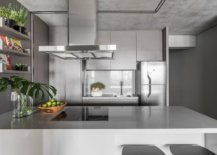 Metal-and-polished-gray-surfaces-shape-this-gorgeous-modern-kitchen-20217-217x155