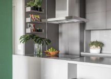 Using-indoor-plants-to-decorate-the-modern-kitchen-in-style-49405-217x155