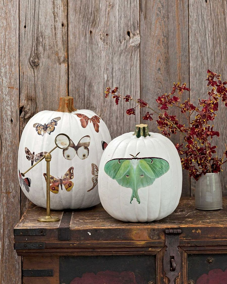 Nature-centric patterns for the pumpkin combine Halloween theme with fall goodness