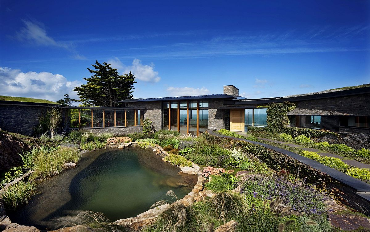 Reeds and plants shape a natural landscape around the pool area and the house while filtering the water naturally