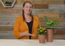 Jess posing with two finished copper planters