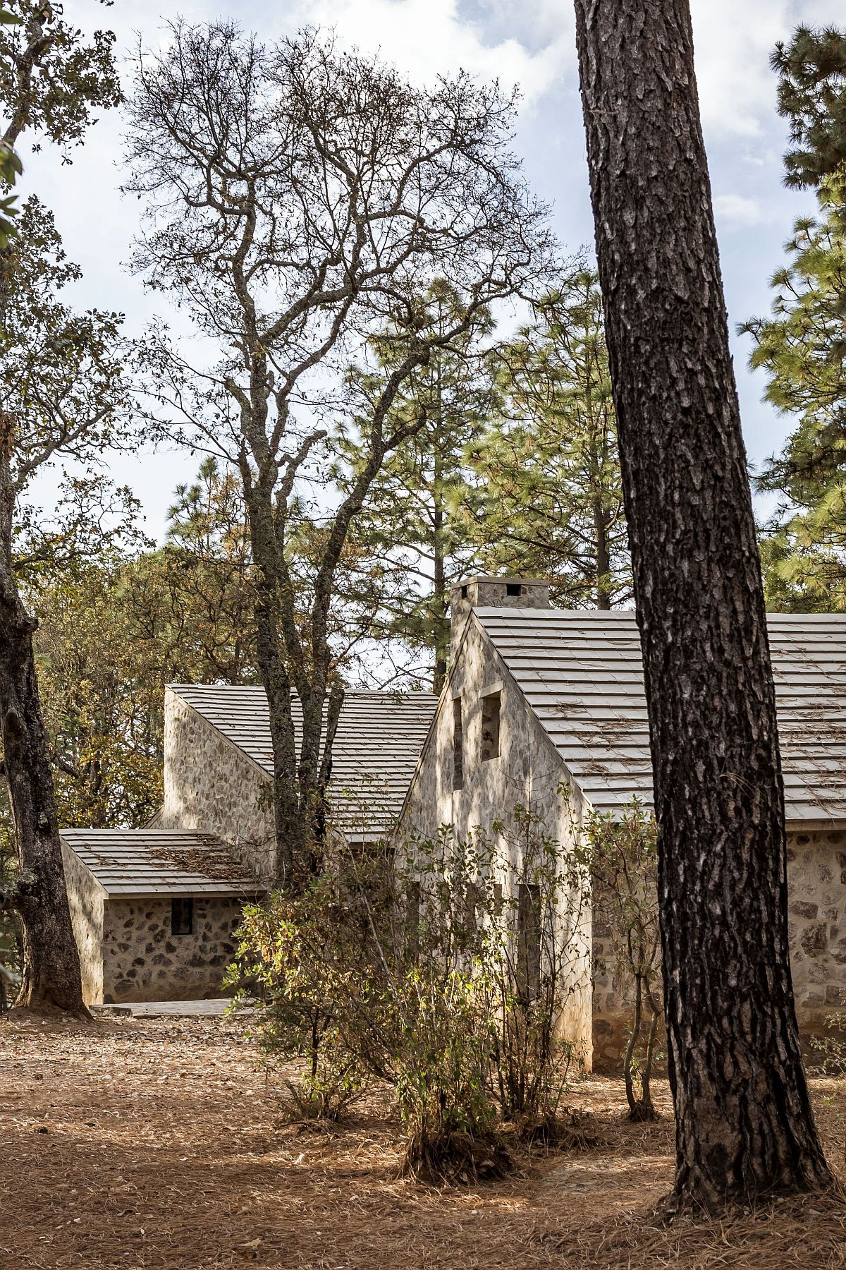 Oak and pine trees flank the path leading to the rustic Mexican cabins