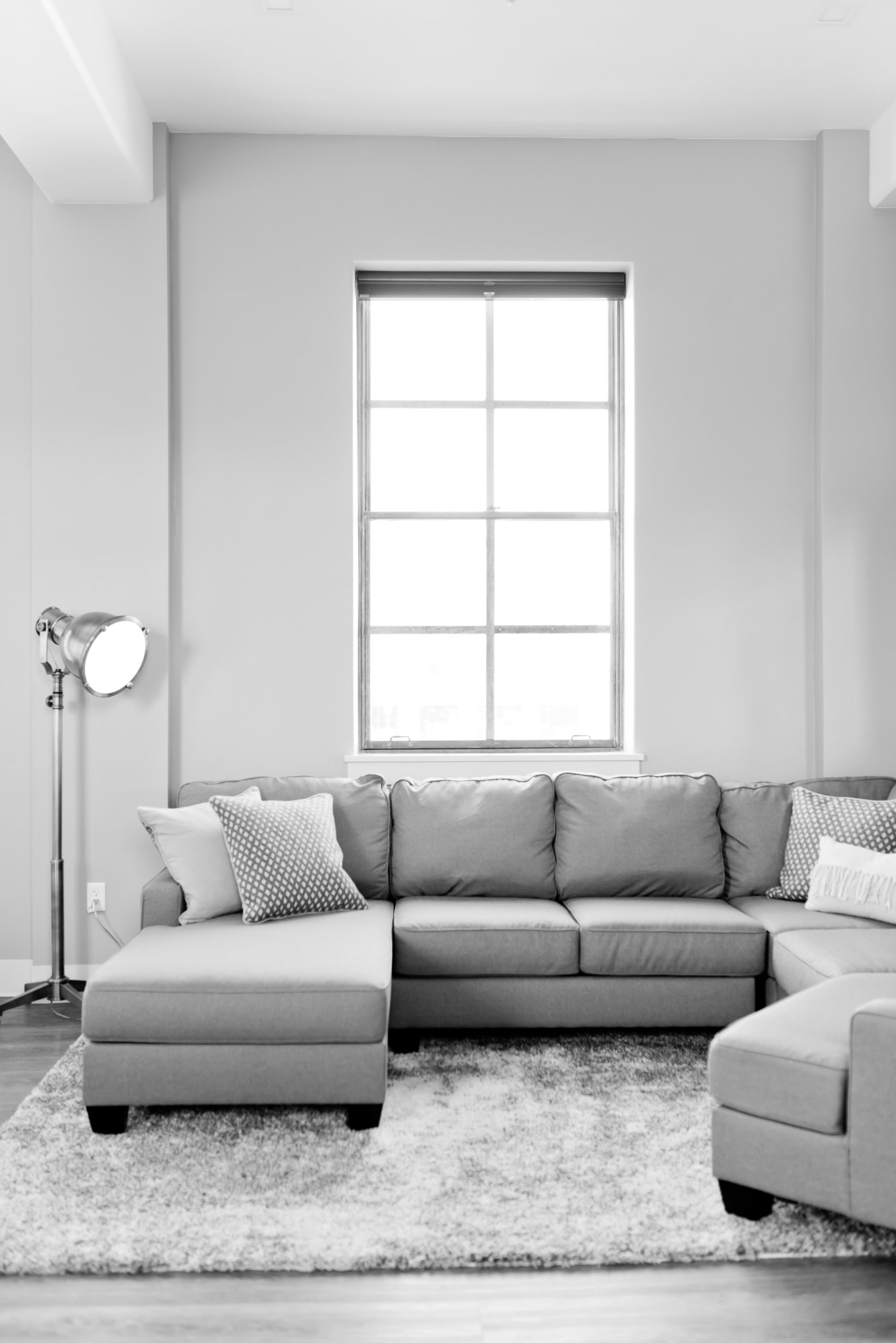 grey paint color with natural light gives illusion of a bigger room