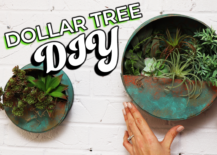 Decoist DIY: Dollar Tree Floating Wall Planter