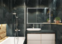 Bathroom with dark walls