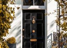 Black door with green vines