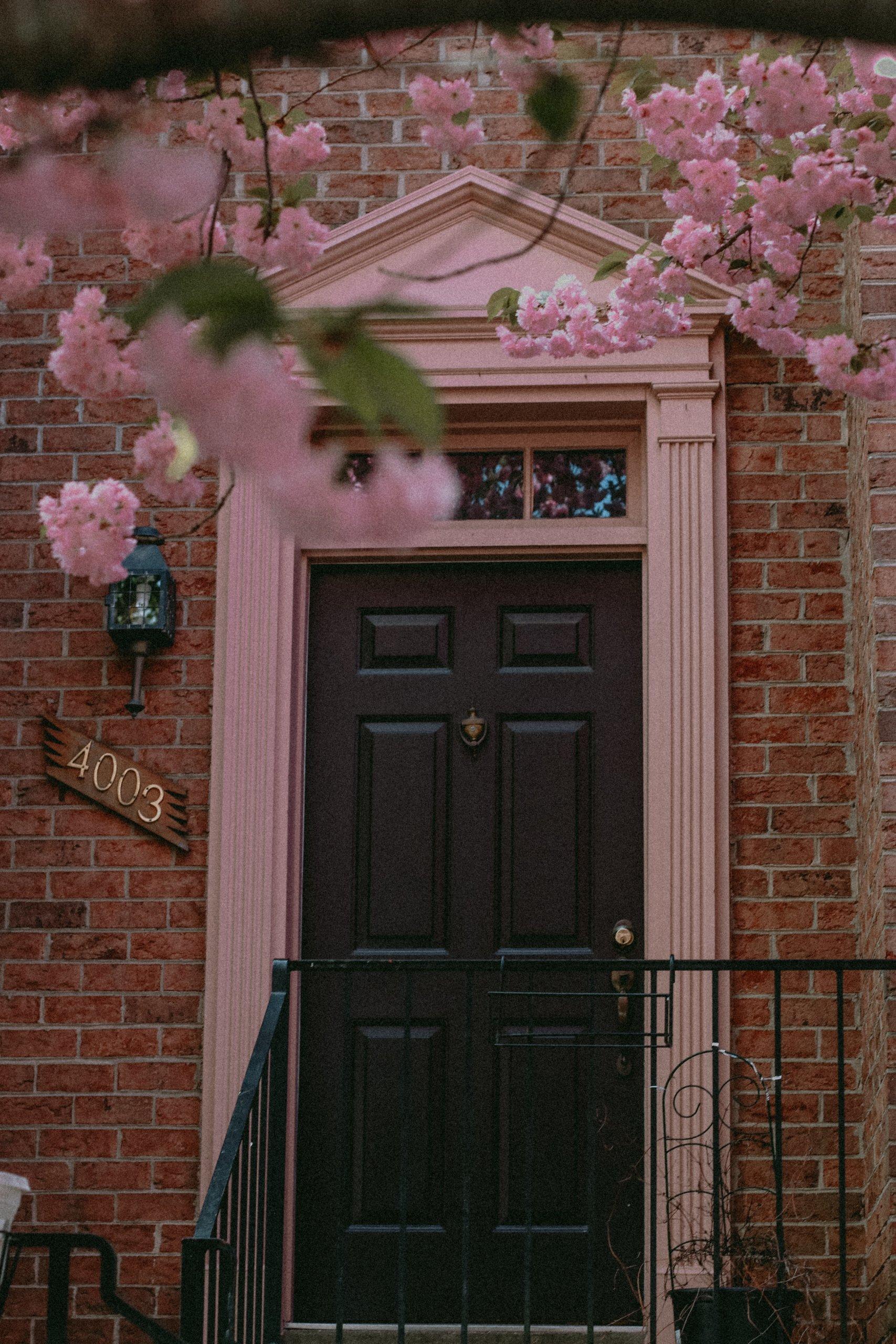 Black door with pink columns