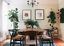 Finding-space-for-greenery-in-the-modern-dining-room-65934-217x155