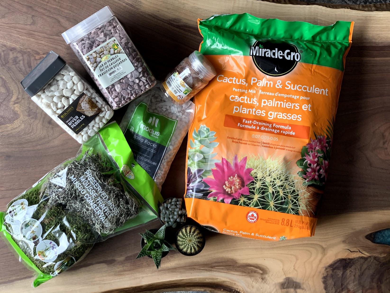 Supply list for decorative succulent terrarium mini garden