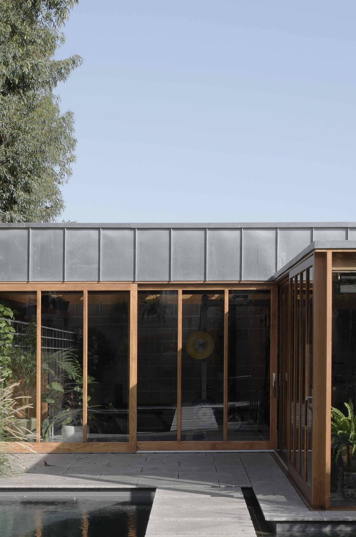 Large Eucalyptus tree outside offers shade to the stylish garden room