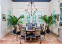 Large-indoor-plants-in-the-dining-room-bring-casual-vibe-to-the-space-64212-217x155