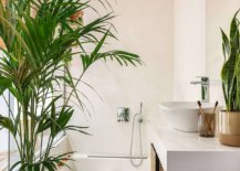 Space-savvy-and-stylish-tropical-bathroom-with-a-lovely-soaking-tub-30011-217x155