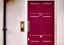 Violet and red flower beside red-violet door