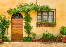 Yellow wall with wooden door and green plants