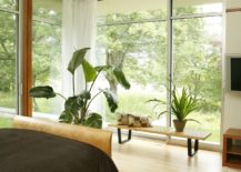 Bring-the-greenery-outside-indoors-with-sliding-glass-doors-and-glass-walls-62091-217x155