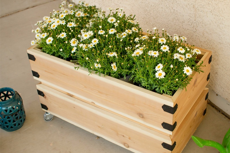 flowers on a crate