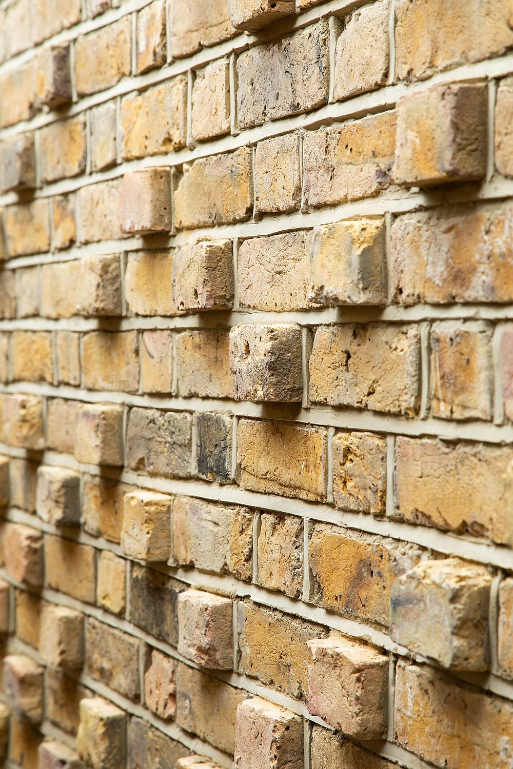 Gorgeous brick wall with blocks peering out makes a impact almost instantly in the backyard