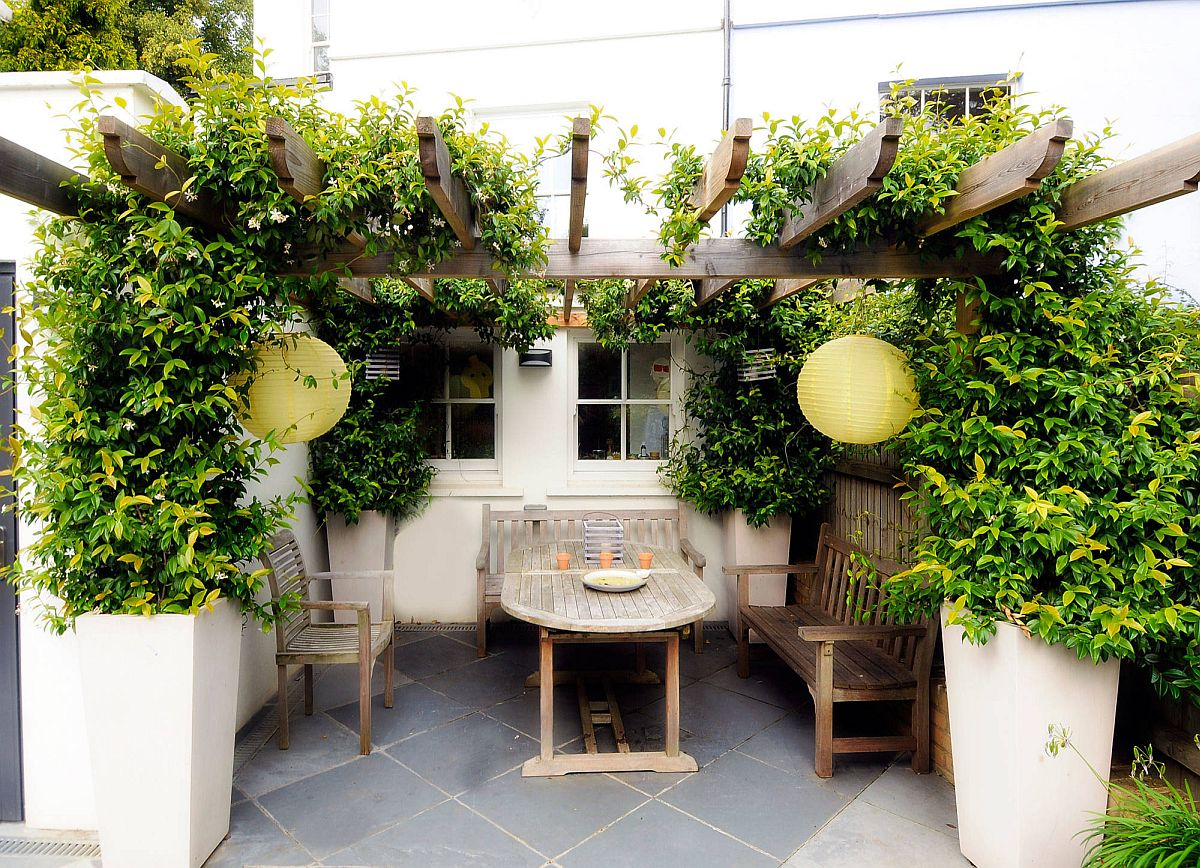 Greenery coupled with a small and stylish pergola structure in the tiny Mediterranean garden