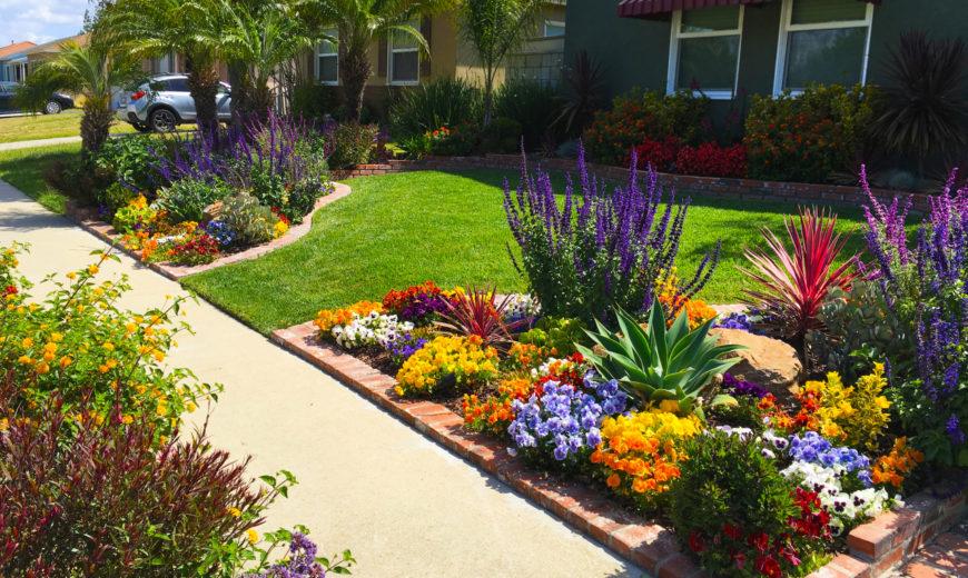 Front Yard Landscaping Ideas And Garden, Front Garden Ideas