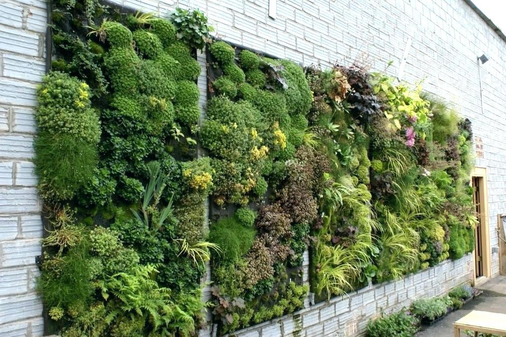 living wall set into brick wall