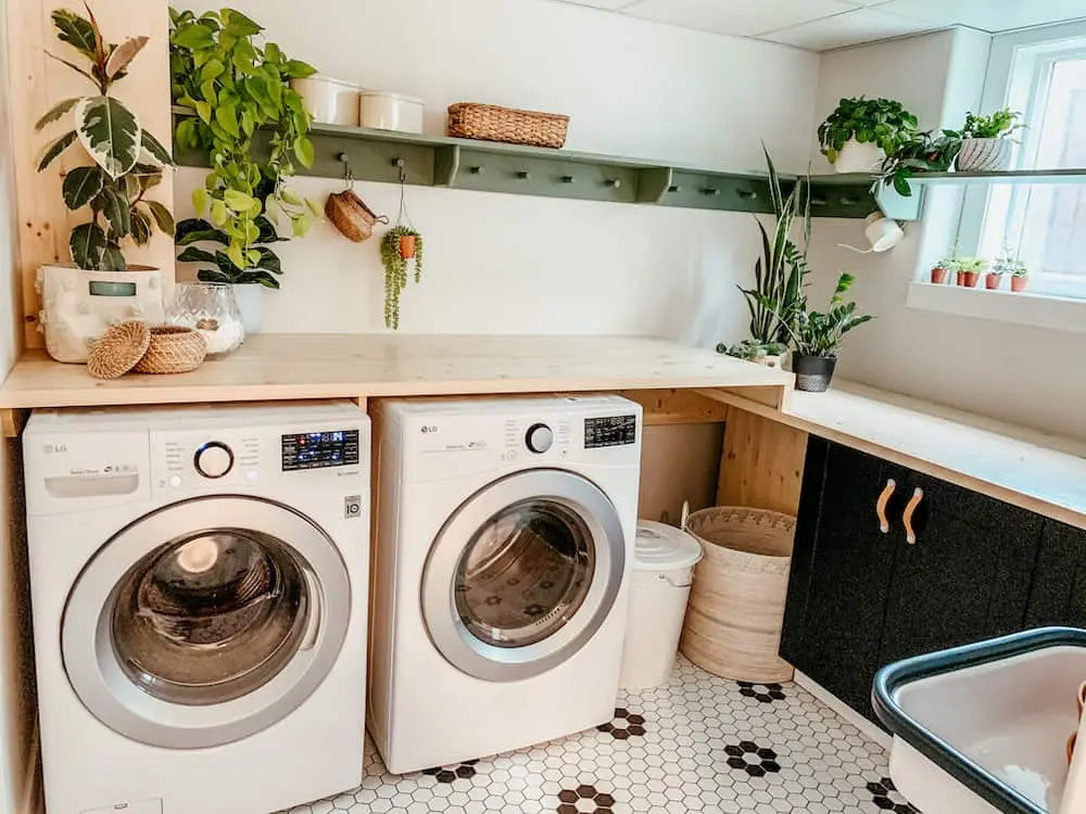 Potted plants in laundry area
