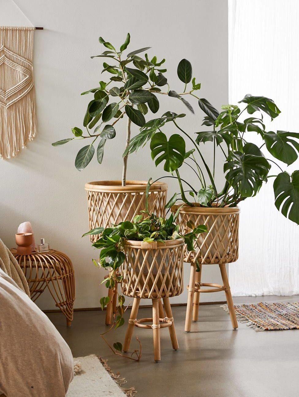 Boho Chic Trend Rattan Plant Stands in Home