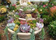 A Fountain of Succulents