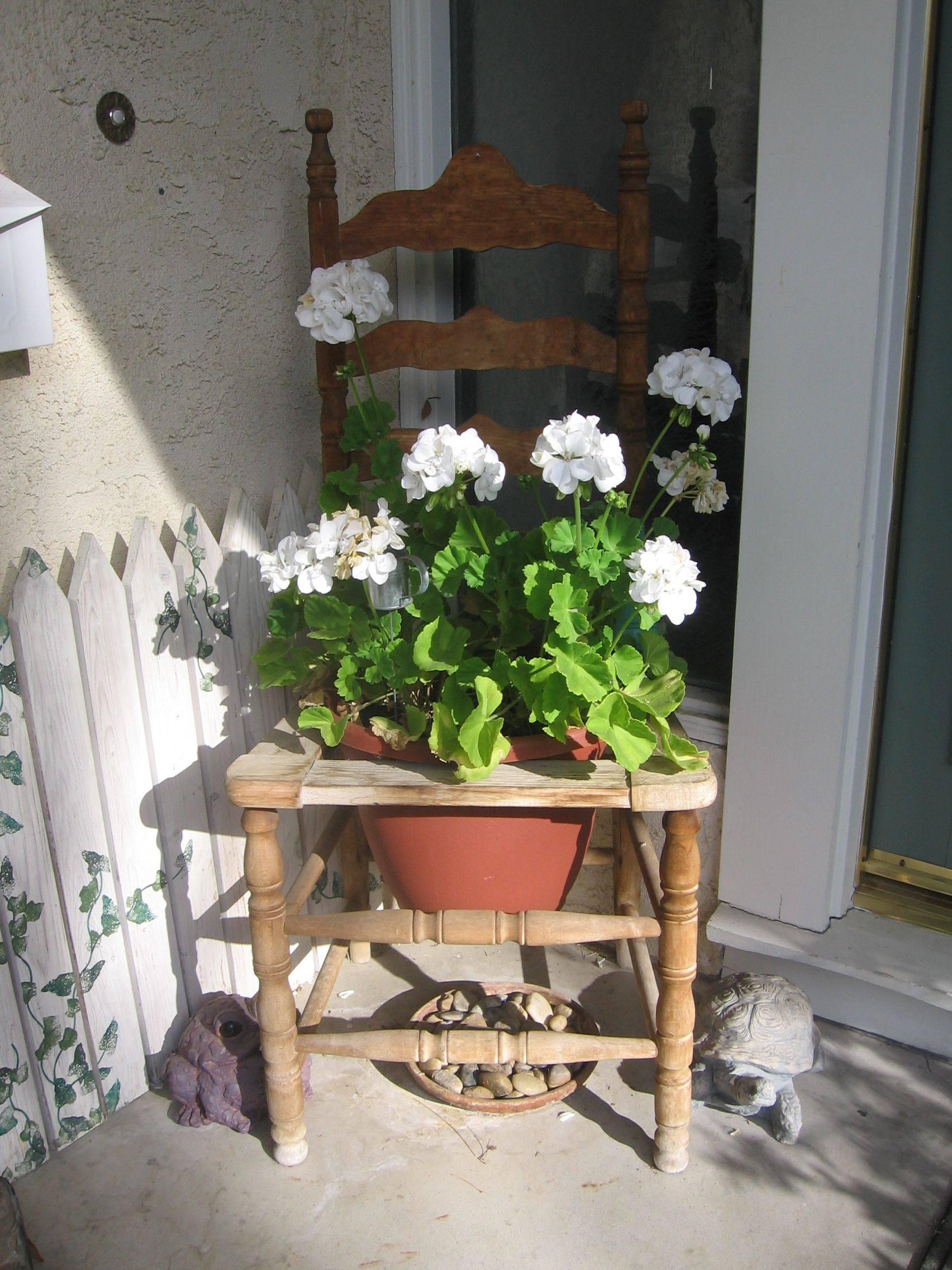 Antique Chair Flower Pot