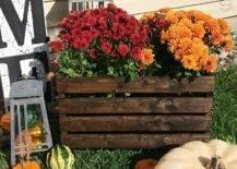 Antique Crate Flower Pot