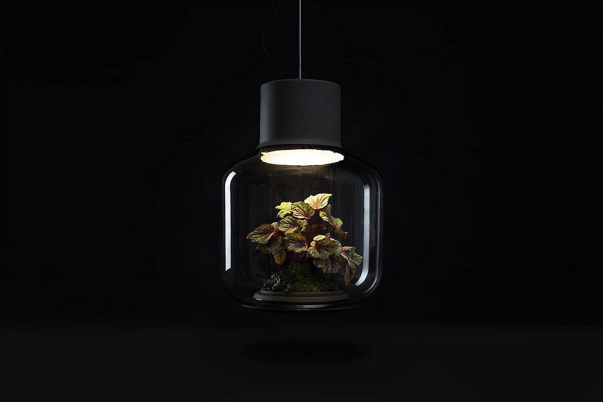 Gorgeous-and-unique-Mygdal-Plantlight-is-hermetically-sealed-69153