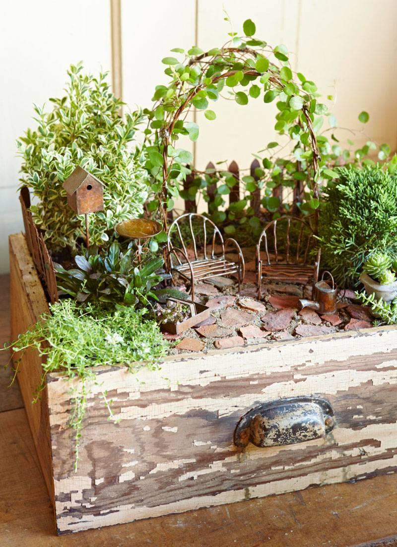 Mini garden using an old drawer