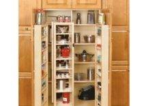 Open cabinet pantry full of things