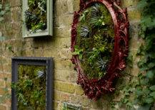 Plant Picture Frame