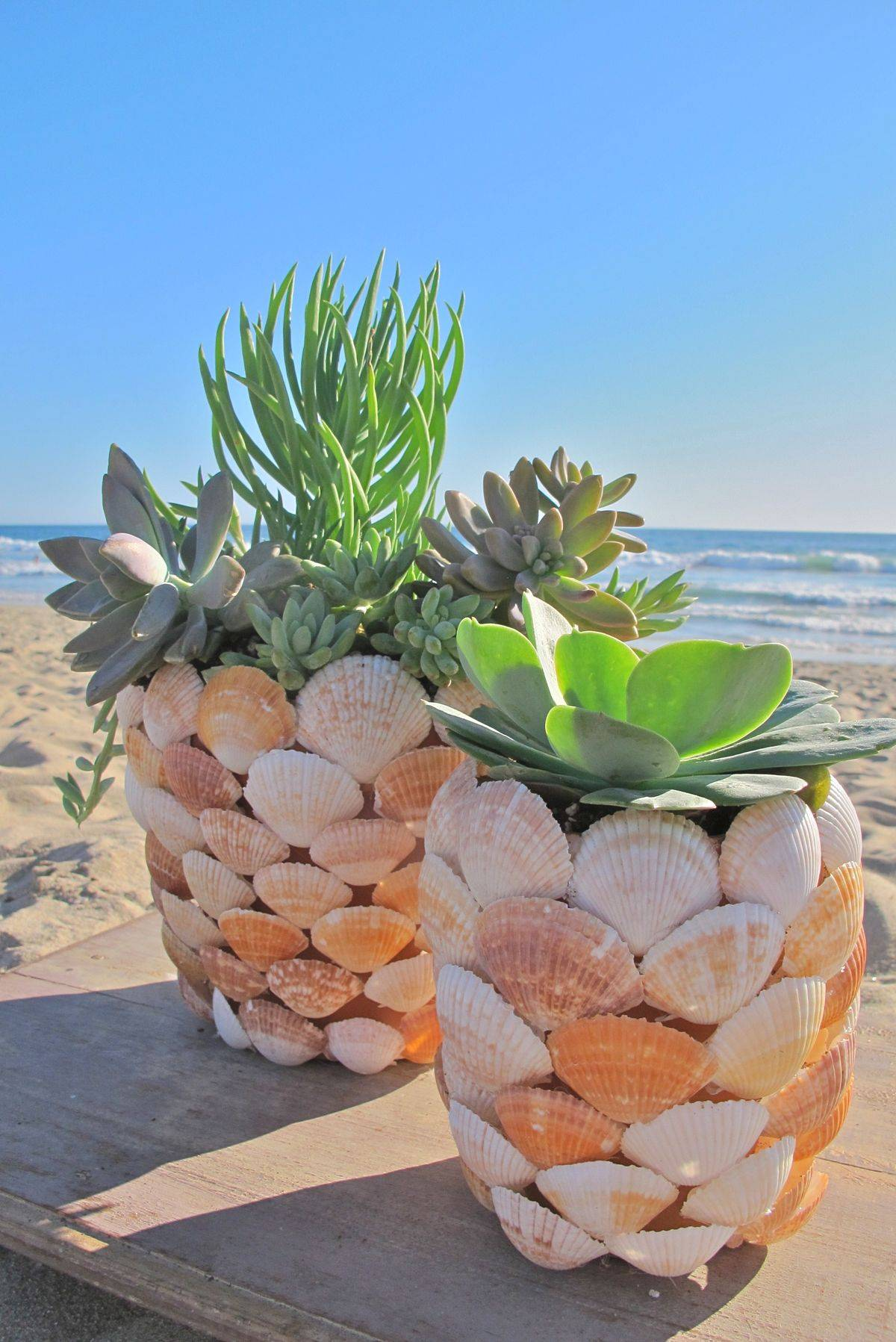 Sea Inspired Planter