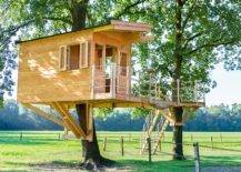 Treehouse supported by two huge trees