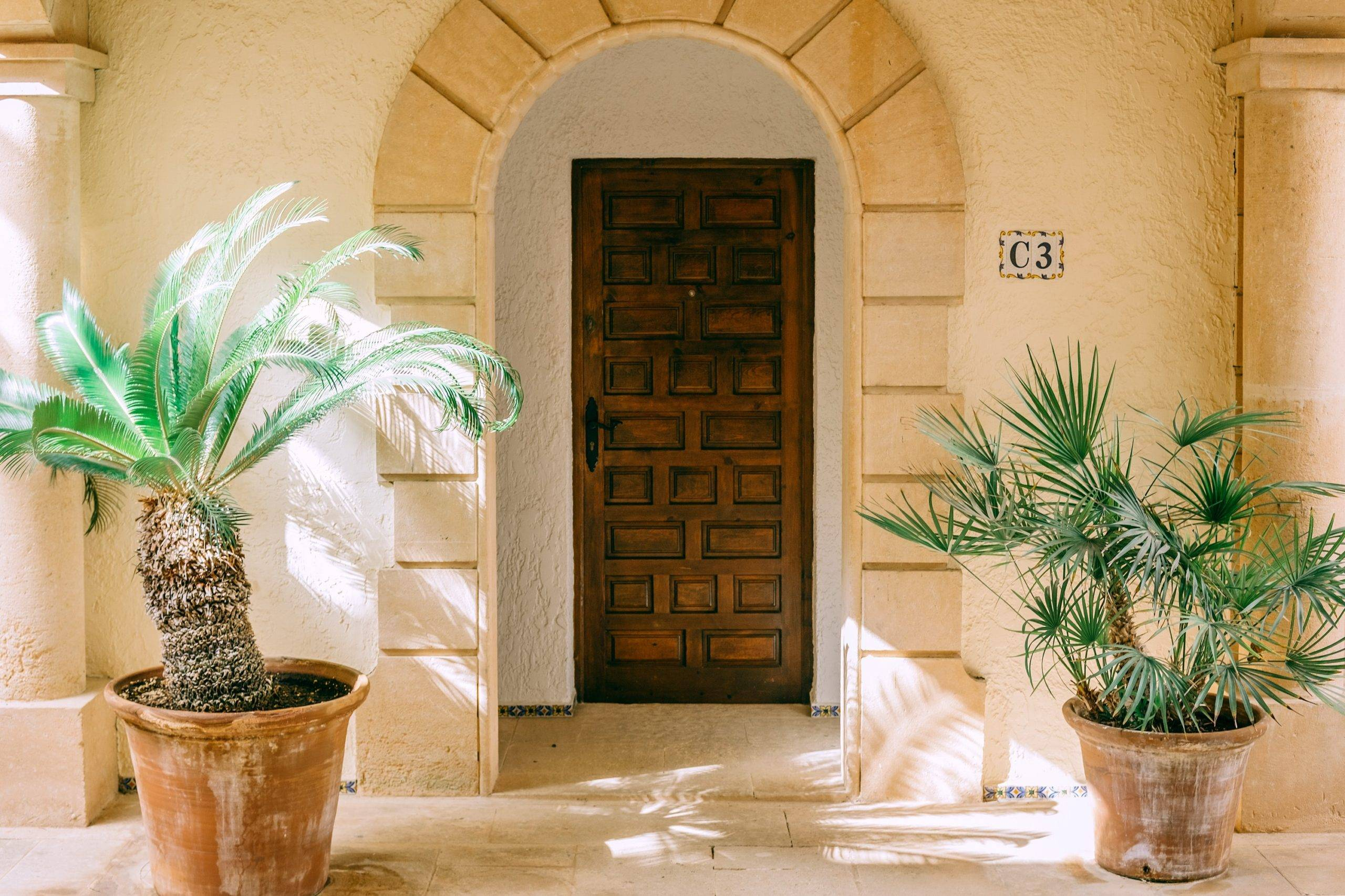Two large potted plants beside archway door